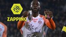 Zapping de la 19ème journée - Ligue 1 Conforama / 2017-18