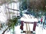 Zonguldak ormanlarında muhteşem kar manzaraları...