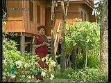 รักต่างแดน - วรนุช อารีย์ (วงกรมประชาสัมพันธ์) (2546)