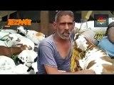 Tezabi Totay Bakra Eid All Funny Special Funny Punjabi Totay 2016 - YouTube