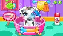 kid dog - bingo dog song - nursery rhyme with lyrics - cartoon animation for