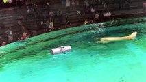 L'ours polaire du zoo de Singapour fête ses 27 ans