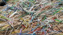 Seattle battles plastic straws to save the oceans