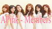 APINK Members Profile 2017 | APINK Introduction