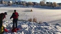 un chien sauvé de la noyade et du froid