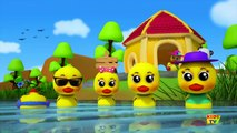 Five Little Ducks Went Swimming One Day Nursery Rhymes Songs For children Baby Songs B