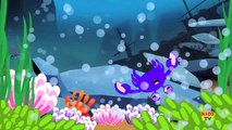Learn Colors With Sharks Colors Song For Children Videos For Baby Kids Tv Learn Colo