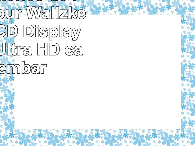 TROIS batteries de rechange pour Wallzkey 2 Inch LCD Display 16MP 4K Ultra HD  caméra