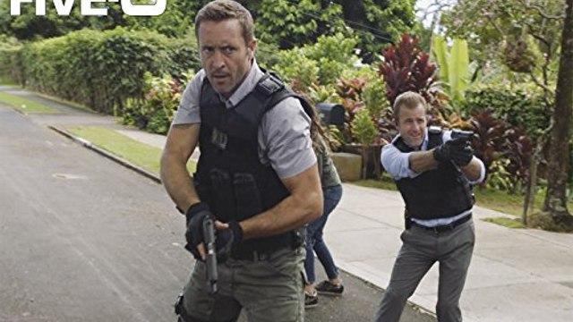 English Subtitles - Hawaii Five Season 8 Episode 12 - Ka Hopu Nui 'Ana (The Round Up)