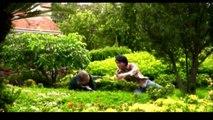 Cười Sặc Cơm với Phim Hài Hoài Linh - Thái Hòa - Phim chiếu rạp Việt Nam hay nhất mọi thời đại - Phần 2