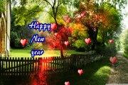 Happy new year best gif,happy new year bear gif,happy new year beyonce gif,daliy motion video