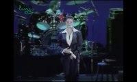 Especial Cássia Eller (MTV 2001)