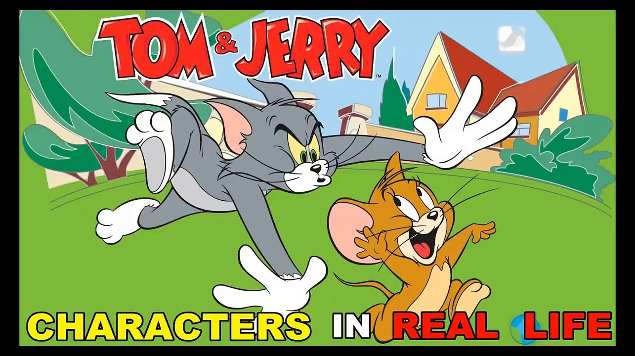 Tom and Jerry || Characters in Real Life ( 2017 )