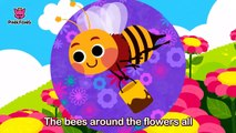Bug'n Roll _ Bug Songs _ Pinkfong Songs for Children-oy