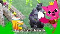 Boom Di Boom Di Gorilla _ Gorilla _ Animal Songs _ Pinkfong Songs for Children