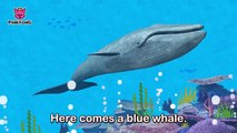 Whoosh, Blue Whale _ Blue Whale _ Animal Songs _ Pinkfong Songs for Children-v