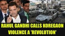 Bhima Koregaon Violence : Rahul Gandhi calls it symbol of dalit resistance, Watch | Oneindia News