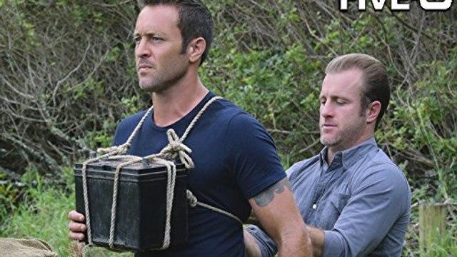 Hawaii Five-0 Season 8 Episode 12 : Ka Hopu Nui 'Ana (The Round Up) - 123Movies