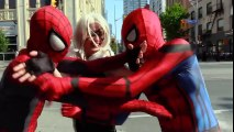 Spider-Man VS Spider-Man - Clone Drama! With Black Cat (parody) | Superheroes | Spiderman | Superman | Frozen Elsa | Joker