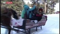 Kar yağışı, Kars, Ardahan ve Ağrı'da etkili oldu