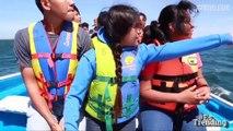 Dar besos y acariciar a las ballenas: el espectáculo que puedes presenciar en México