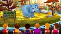 Finger Family Elephant _ ChuChu TV Animal Finger Family Songs & Nursery Rhymes