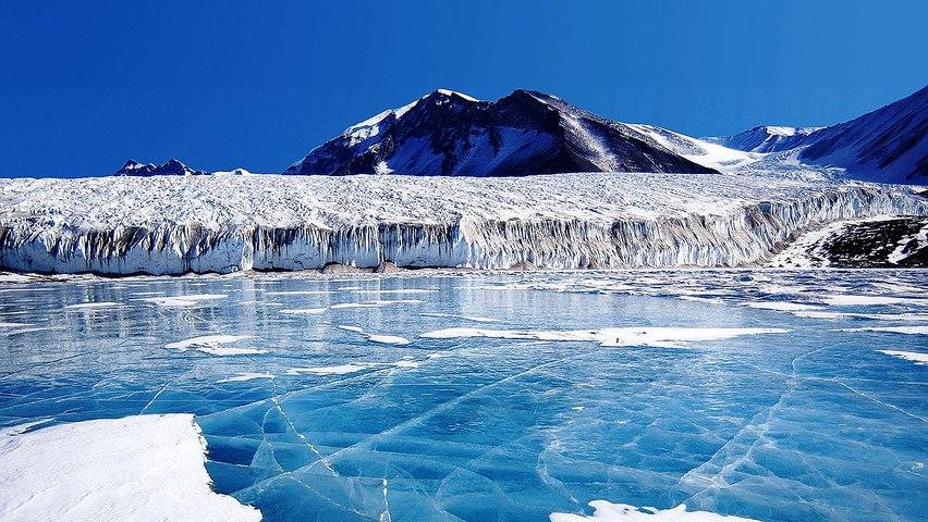 """Científicos descubren el fósil de un reptil marino gigante en un """"mar congelado"""" de la Antártida"""