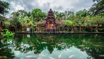 Fish Pond On The Background Of The Temple in Bali, Indonesia by Timelapse4K