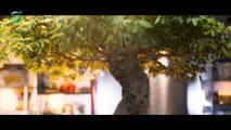 Awe Movie Official Telugu Trailer | Nithya Menon | Nani | Kajal Agarwal | Regina Cassandra |  Avasarala Sreenivas | 3 F
