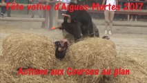 Aigues-Mortes 2017-Actions-Courses au plan