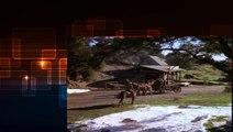 Little House on the Prairie S01E15 Christmas at Plum Creek by Little House on the Prairie
