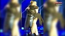 Céline Dion : Une fan déchaînée lui grimpe dessus en plein concert (Vidéo)
