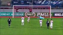 All Goals France  Coupe de France  Round 9 - 06.01.2018 AS Nancy-Lorraine 2-3 Lyon