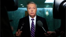 Lindsey Graham Insists Trump Is 'Doing A Really Good Job' While Making Fun Of His 'Genius' Tweet