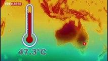 Sydney'de son 80 yılın en sıcak yazı yaşanıyor
