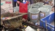 Bodrum'daki deniz dibi temizliği sürprizlerle doluydu