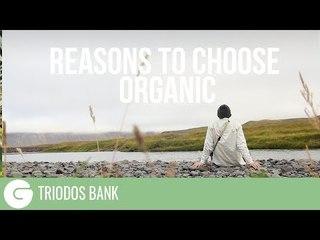 Reasons To Choose Organic