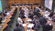 Audition de M. Louis Schweitzer, commissaire gl à l'investissement - Mercredi 29 octobre 2014