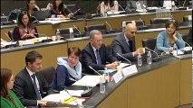 Commission des affaires culturelles et commission des affaires européennes : table ronde sur le cinéma et l'audiovisuel européens (première partie) - Mercredi 8 février 2017