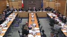 Commission des lois : M. Bruno Le Roux, ministre, sur le projet Sécurité publique - Mardi 31 janvier 2017