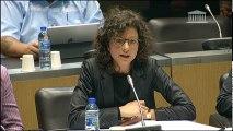 Commission des affaires économiques, commission du développement durable, commission des finances : Auditions sur la réforme du CITE - Jeudi 2 novembre 2017