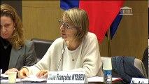 Commission des affaires culturelles et commission des affaires européennes : Mme Françoise Nyssen, ministre, sur le Conseil des ministres européens de la culture - Mercredi 15 novembre 2017