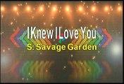 Savage Garden I Knew I Love You Karaoke Version