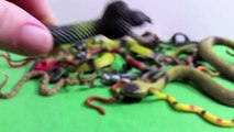 HUGE Toy Snakes Collection Real Snake Sounds- Toy Animals- Serpientes de Juguete