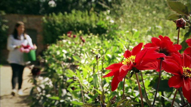 Great British Garden Revival, Promo