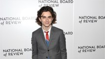 Timothee Chalamet Donates 'Woody Allen Movie Money To Charity