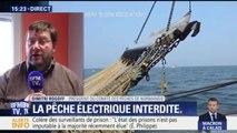 """""""La pêche électrique a un impact sur la faune qui n'est pas connu"""""""