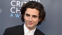 Timothée Chalamet Donates His Salary From Woody Allen Movie To Charity