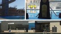 Cal Aquatics: Legends Aquatics Center Opening