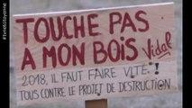 Aix les Bains: Le bois Vidal va -t-il être livré aux promoteurs ?